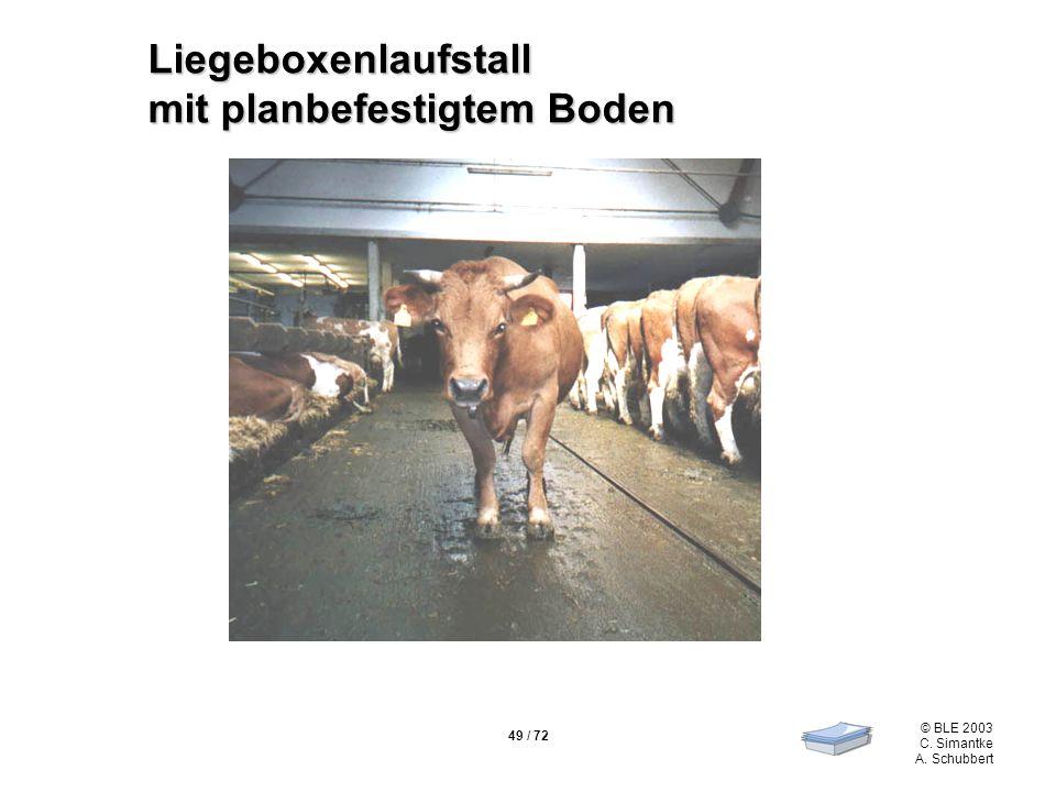 Liegeboxenlaufstall mit planbefestigtem Boden