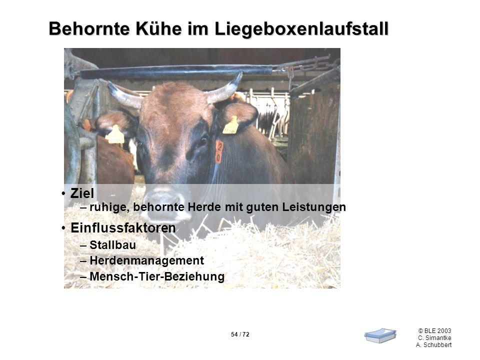 Behornte Kühe im Liegeboxenlaufstall