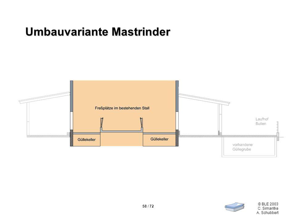 Umbauvariante Mastrinder