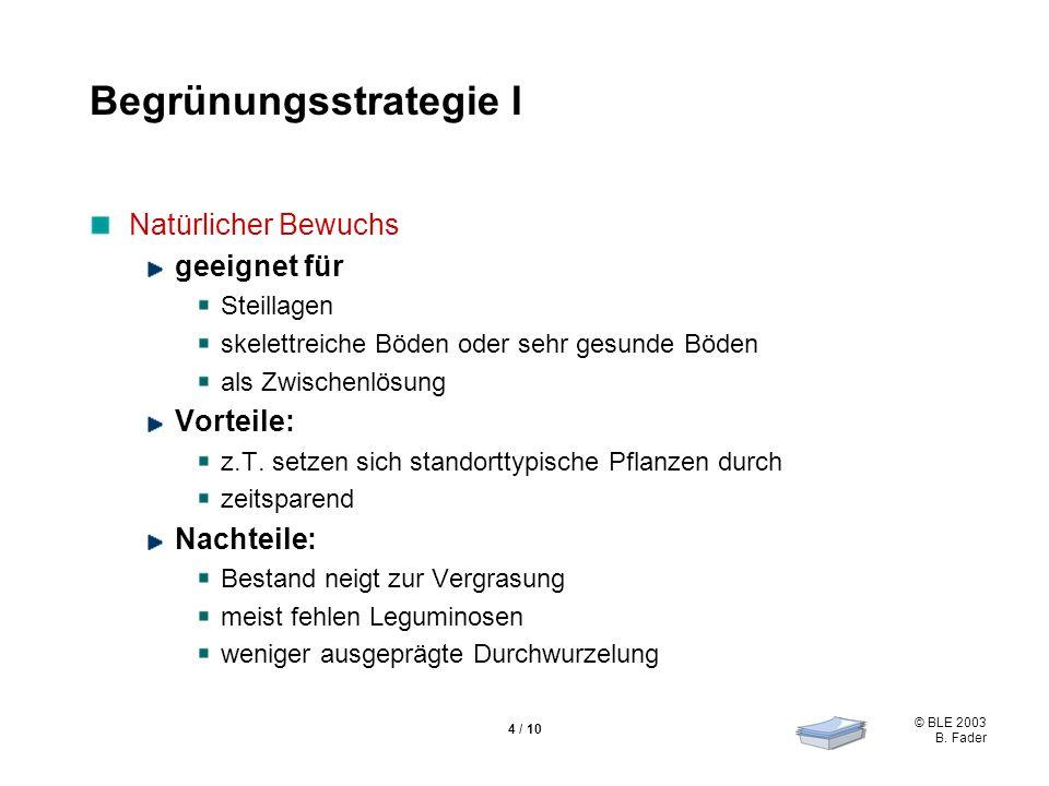 Begrünungsstrategie I