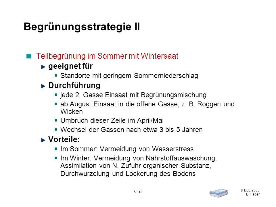 Begrünungsstrategie II