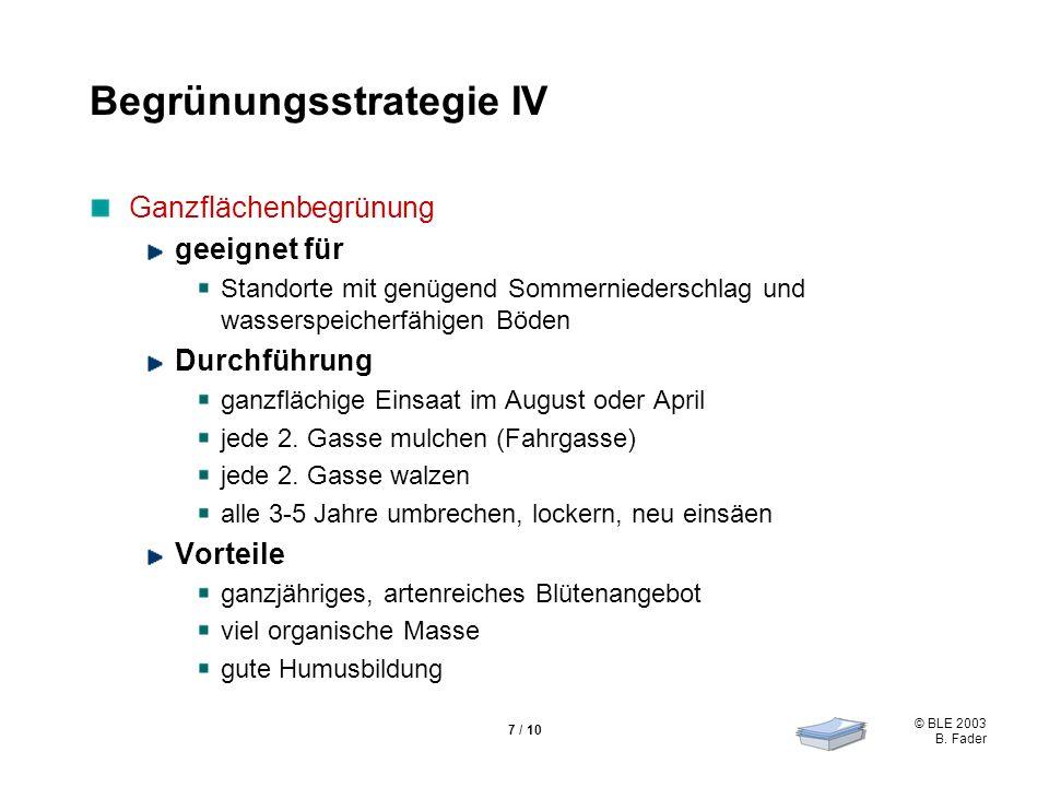 Begrünungsstrategie IV
