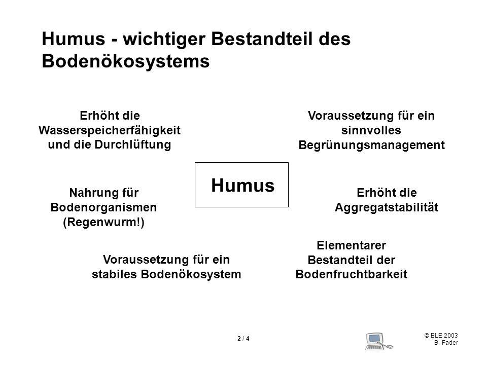 Humus - wichtiger Bestandteil des Bodenökosystems