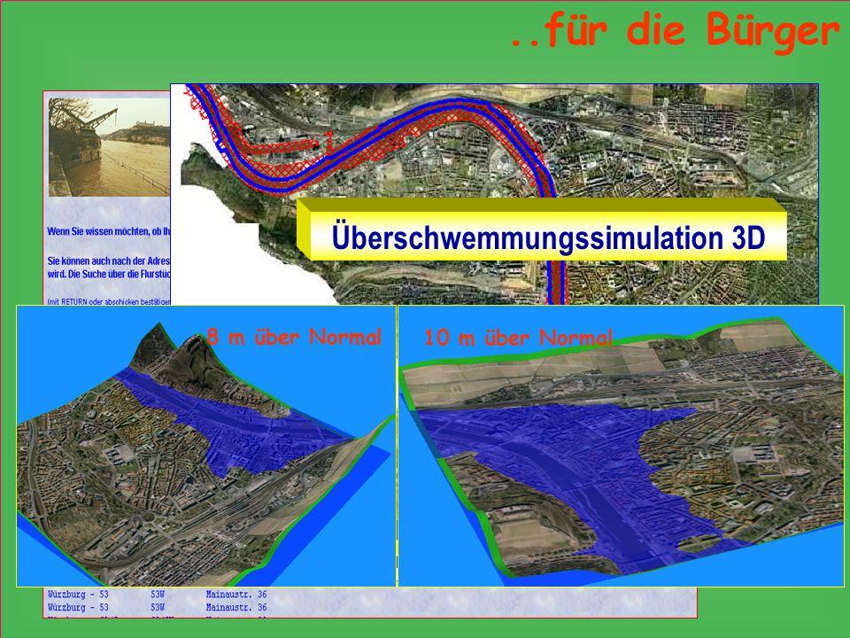Überschwemmungssimulation 3D