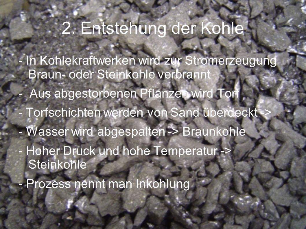 2. Entstehung der Kohle- In Kohlekraftwerken wird zur Stromerzeugung Braun- oder Steinkohle verbrannt.