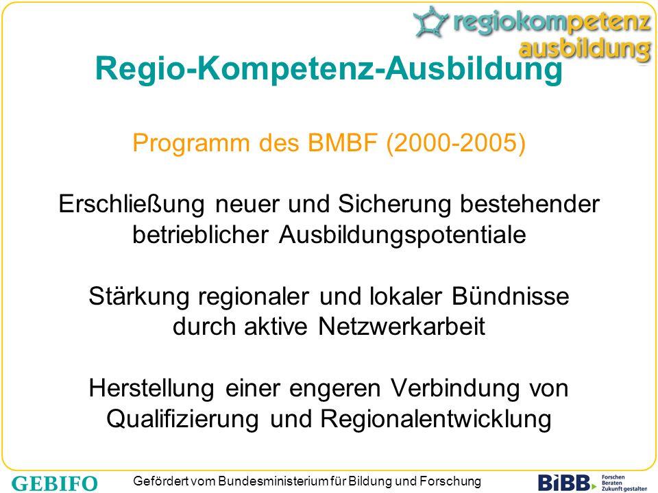 Regio-Kompetenz-Ausbildung Programm des BMBF (2000-2005) Erschließung neuer und Sicherung bestehender betrieblicher Ausbildungspotentiale Stärkung regionaler und lokaler Bündnisse durch aktive Netzwerkarbeit Herstellung einer engeren Verbindung von Qualifizierung und Regionalentwicklung