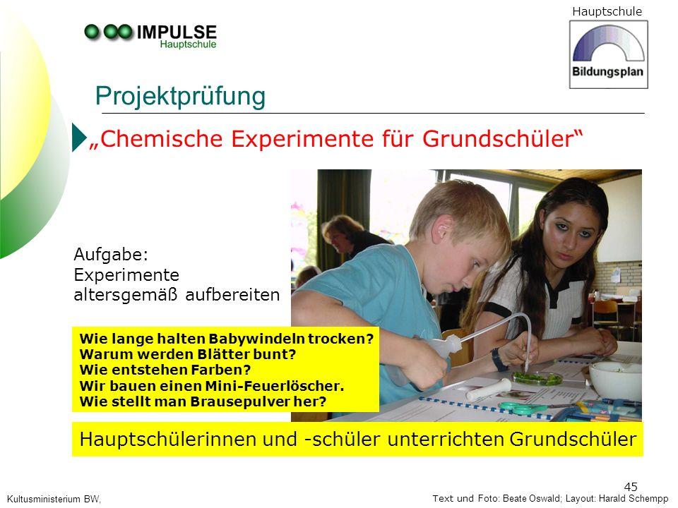 """Projektprüfung """"Chemische Experimente für Grundschüler"""