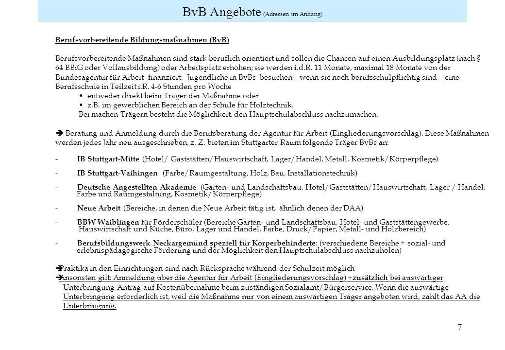 BvB Angebote (Adressen im Anhang)
