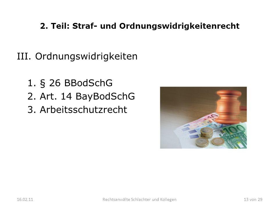2. Teil: Straf- und Ordnungswidrigkeitenrecht