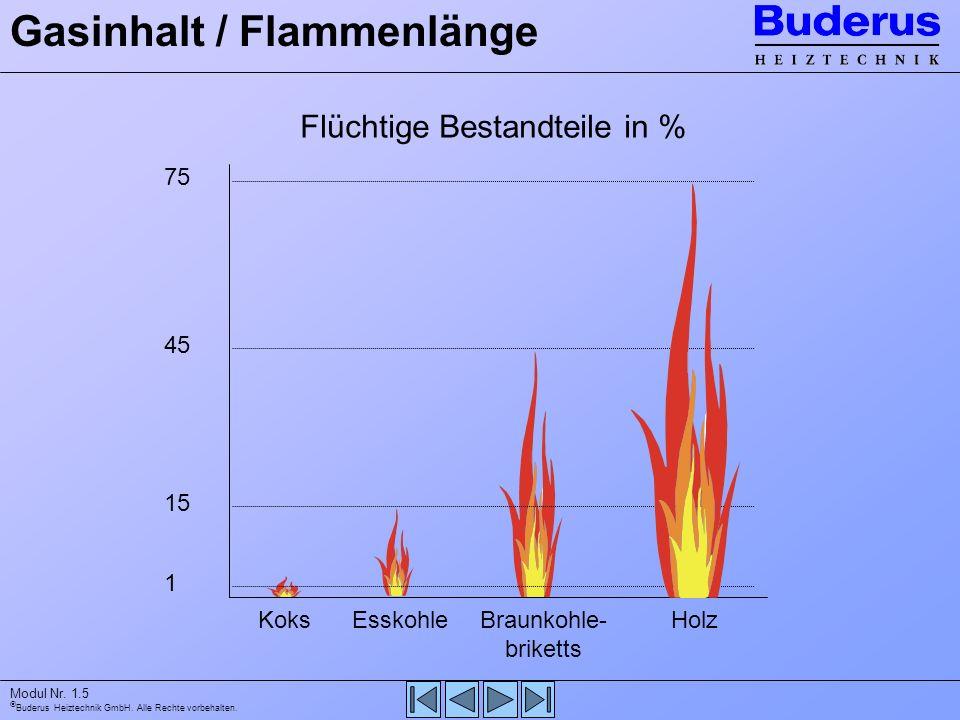 Gasinhalt / Flammenlänge