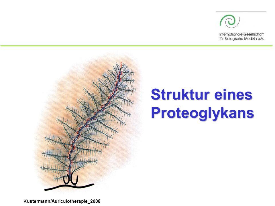 Struktur eines Proteoglykans