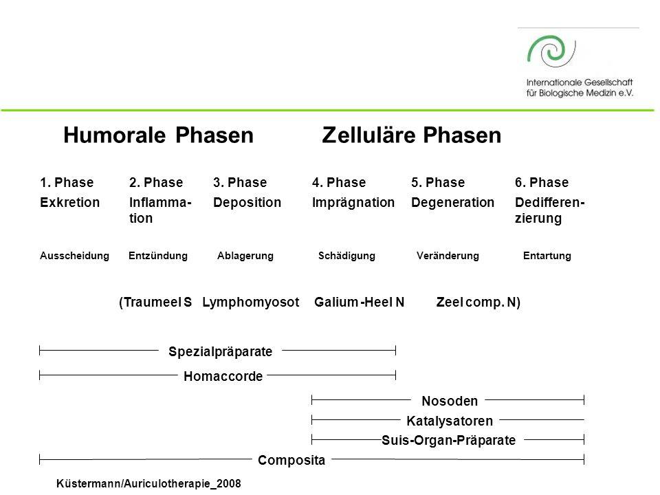Humorale Phasen Zelluläre Phasen 1. Phase Exkretion 2. Phase Inflamma