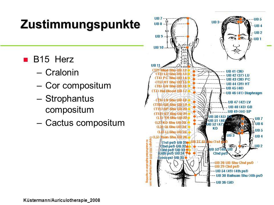 Zustimmungspunkte B15 Herz Cralonin Cor compositum