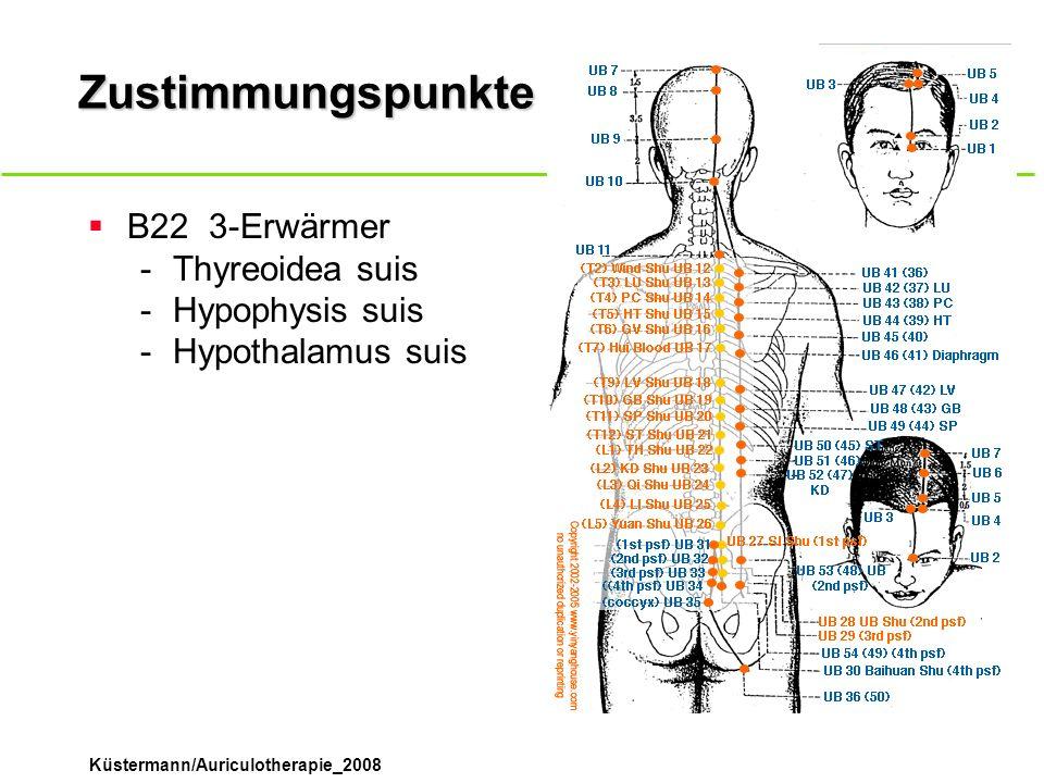 Zustimmungspunkte B22 3-Erwärmer Thyreoidea suis Hypophysis suis