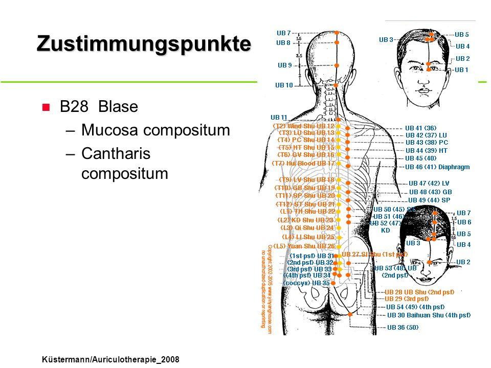 Zustimmungspunkte B28 Blase Mucosa compositum Cantharis compositum