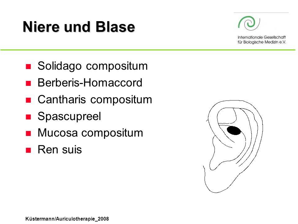 Niere und Blase Solidago compositum Berberis-Homaccord