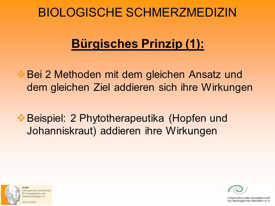 Bürgisches Prinzip (1):