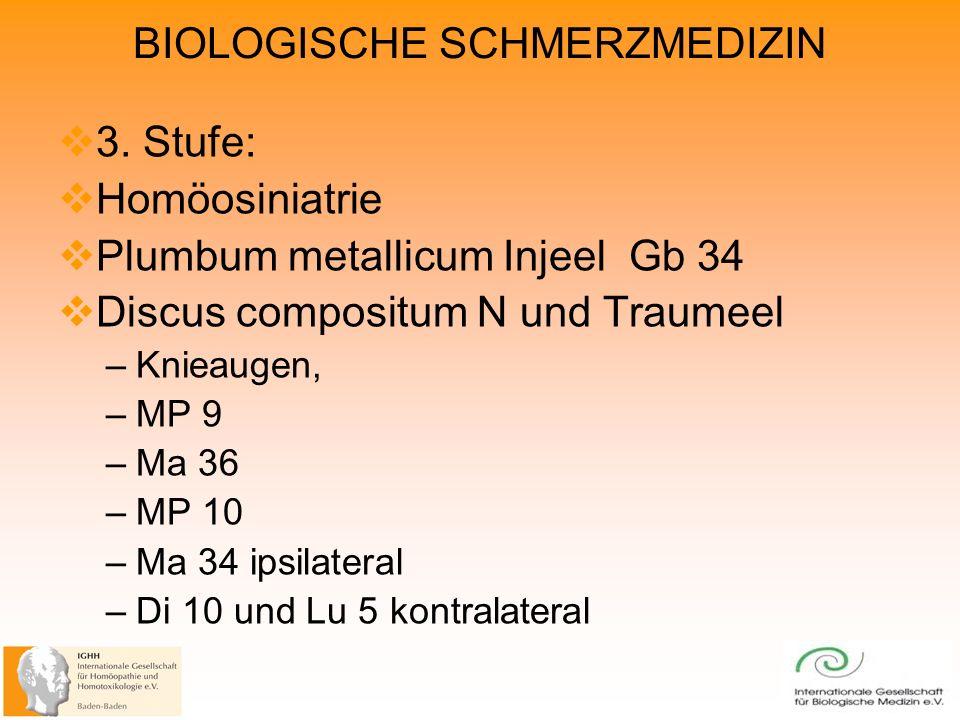 Plumbum metallicum Injeel Gb 34 Discus compositum N und Traumeel