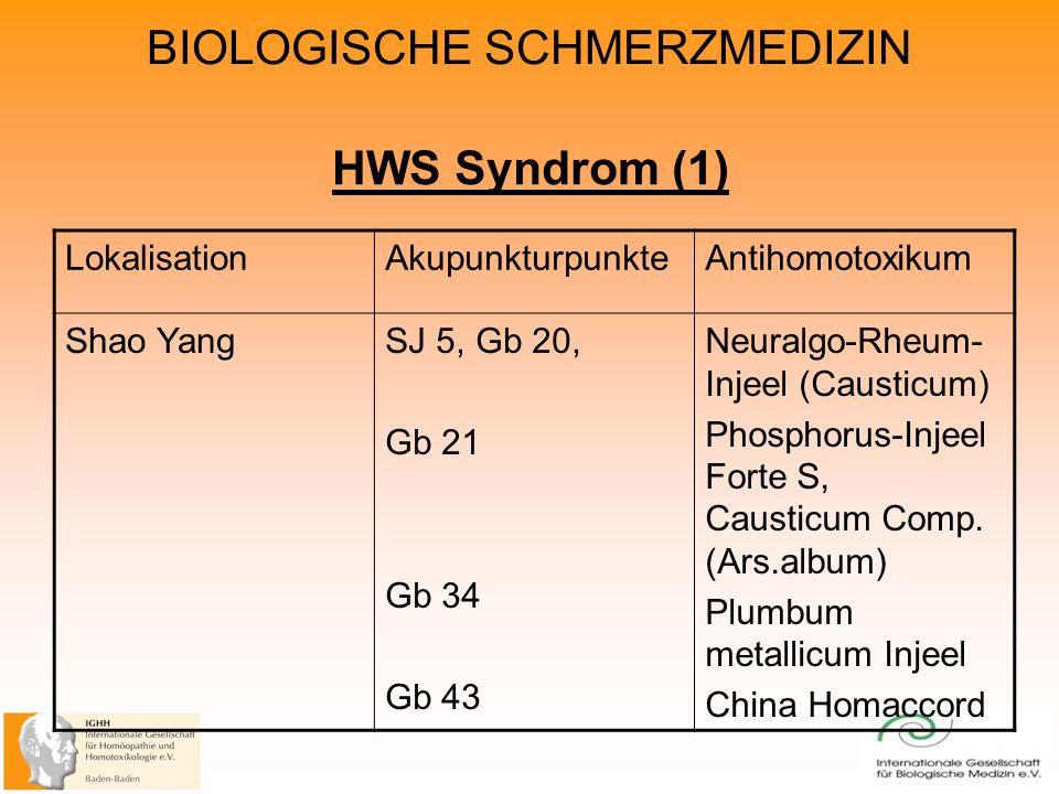 HWS Syndrom (1) Lokalisation Akupunkturpunkte Antihomotoxikum