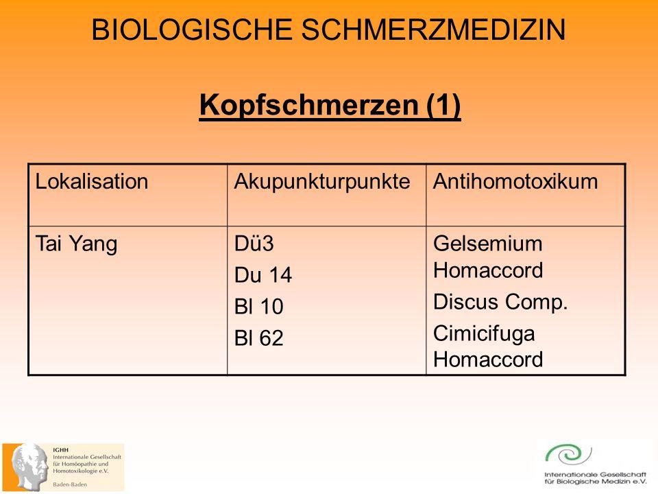 Kopfschmerzen (1) Lokalisation Akupunkturpunkte Antihomotoxikum