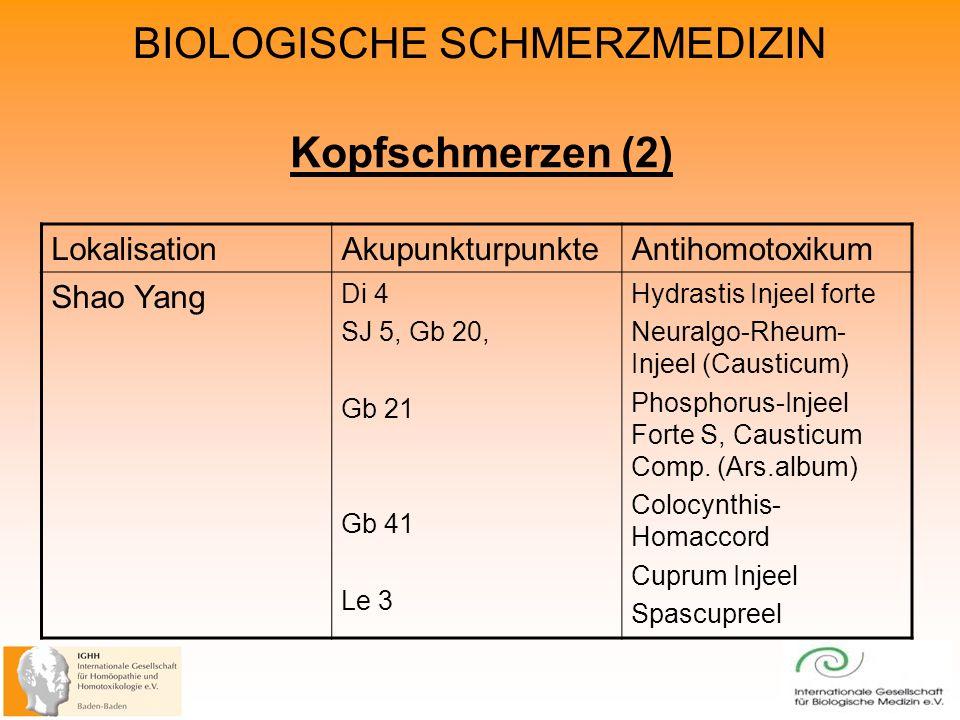 Kopfschmerzen (2) Lokalisation Akupunkturpunkte Antihomotoxikum