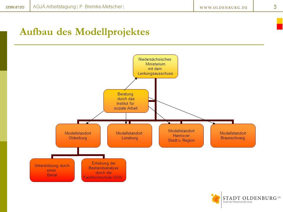 Aufbau des Modellprojektes