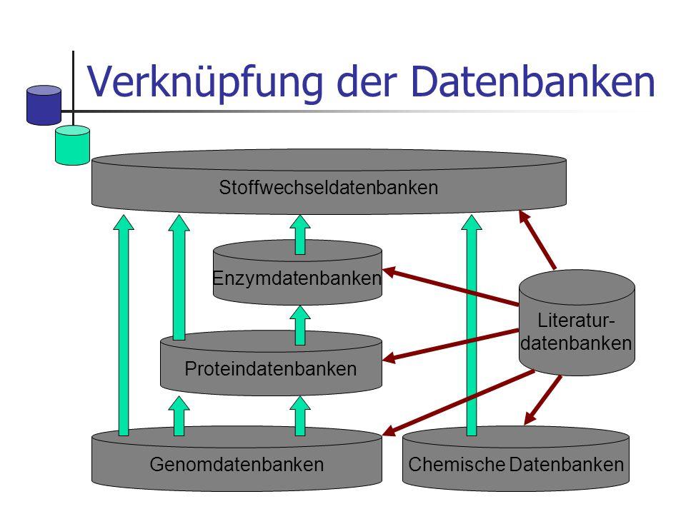 Verknüpfung der Datenbanken