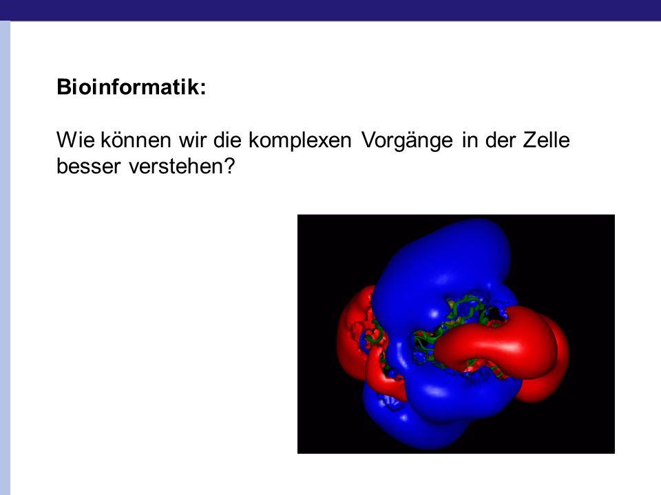 Bioinformatik: Wie können wir die komplexen Vorgänge in der Zelle besser verstehen