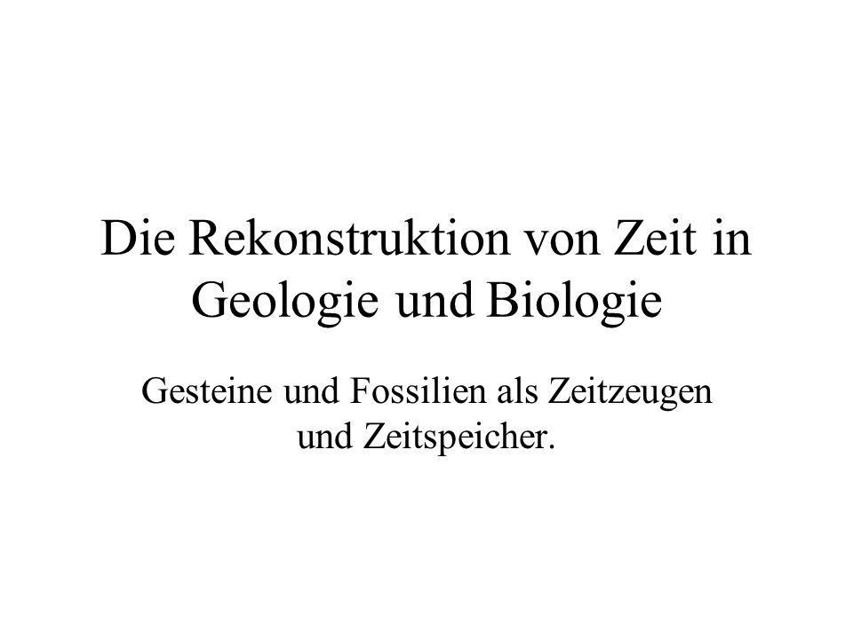 Die Rekonstruktion von Zeit in Geologie und Biologie
