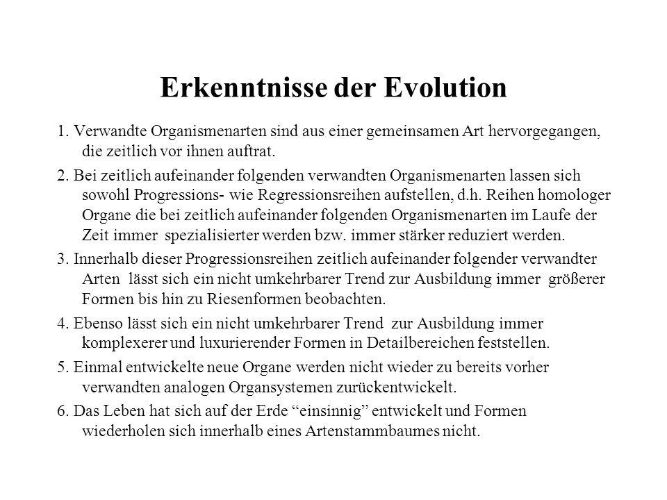 Erkenntnisse der Evolution
