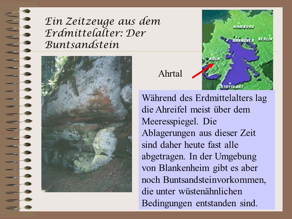 Ein Zeitzeuge aus dem Erdmittelalter: Der Buntsandstein