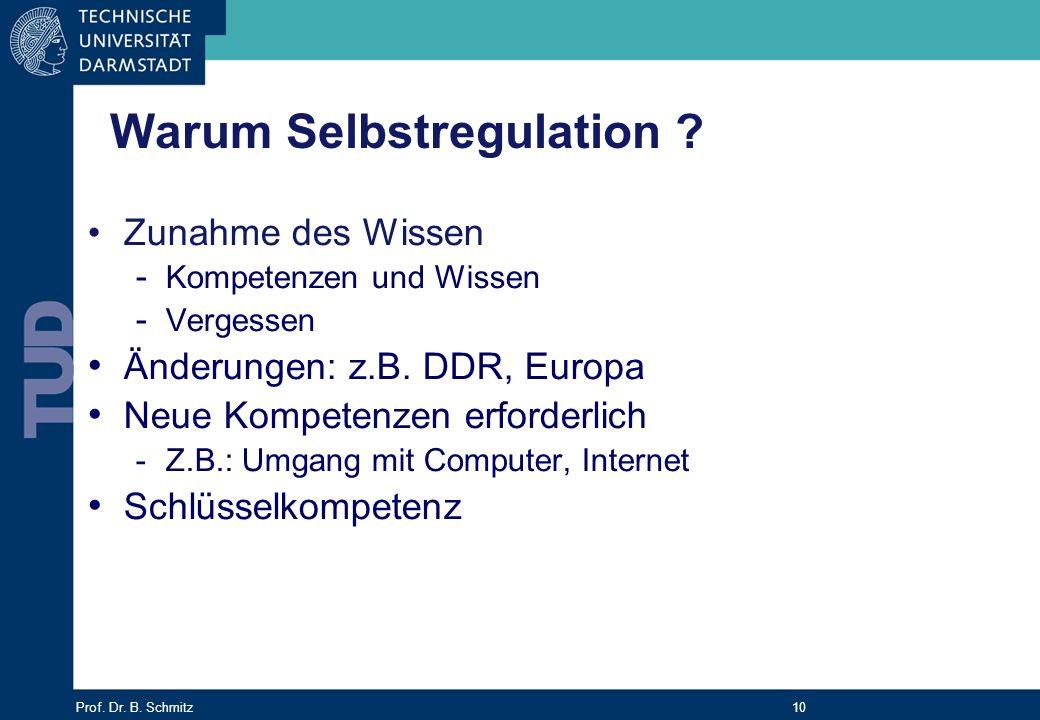 Warum Selbstregulation