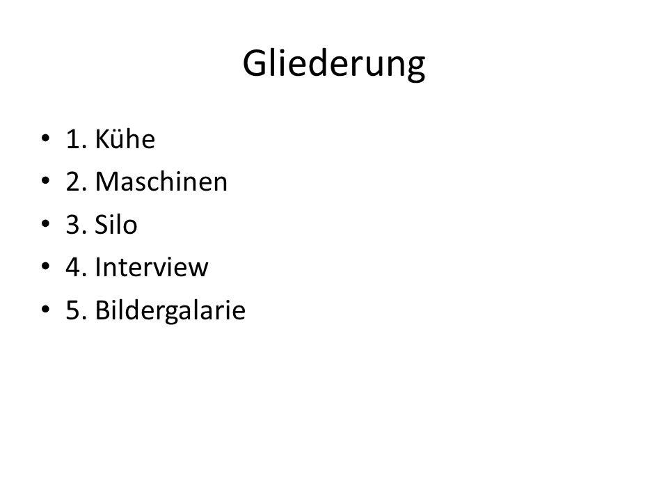Gliederung 1. Kühe 2. Maschinen 3. Silo 4. Interview 5. Bildergalarie