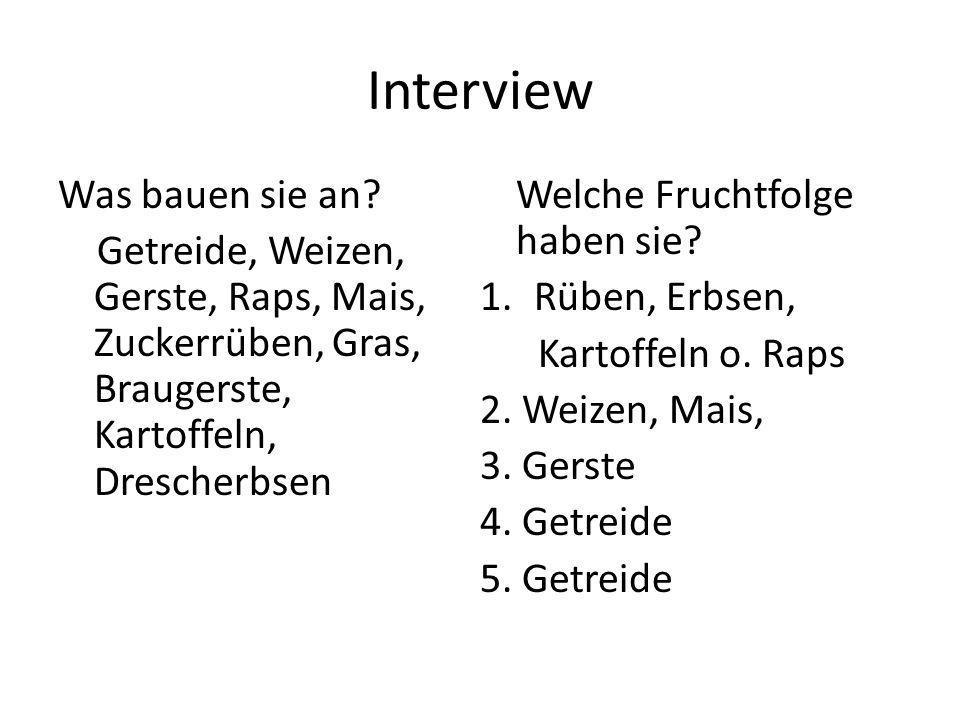Interview Was bauen sie an