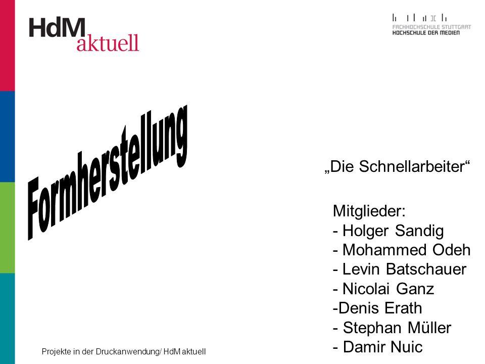 """Formherstellung """"Die Schnellarbeiter Mitglieder: - Holger Sandig"""