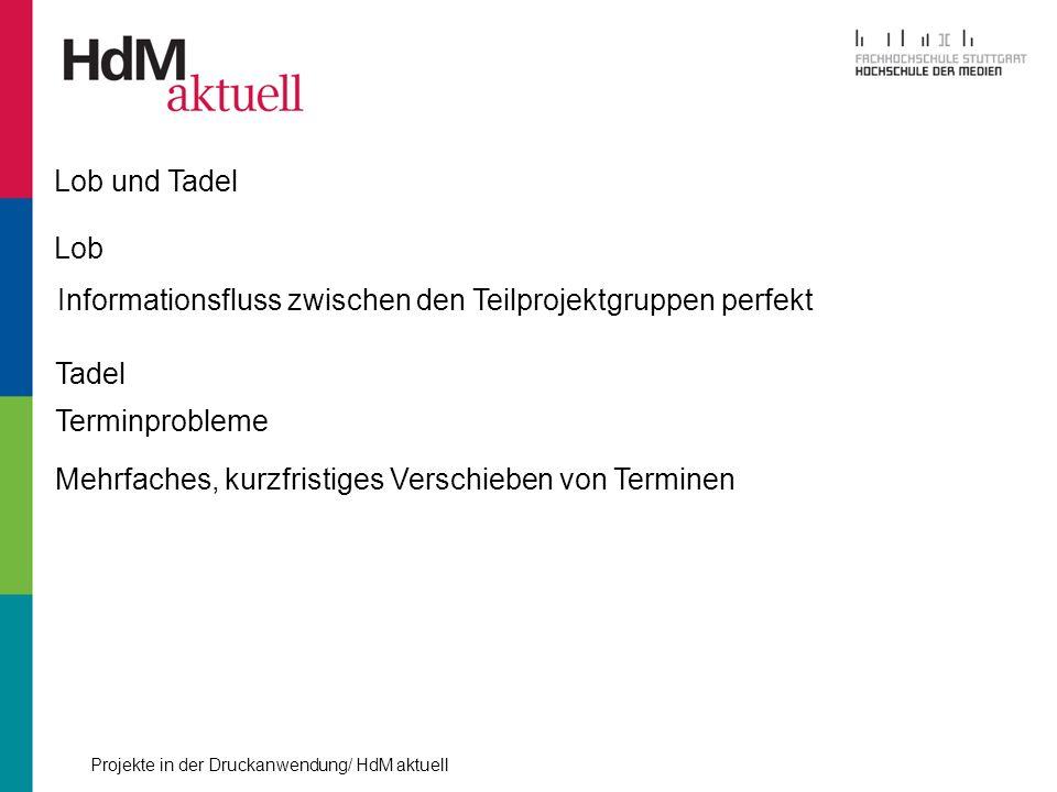 Lob und Tadel Lob. Informationsfluss zwischen den Teilprojektgruppen perfekt. Tadel. Terminprobleme.