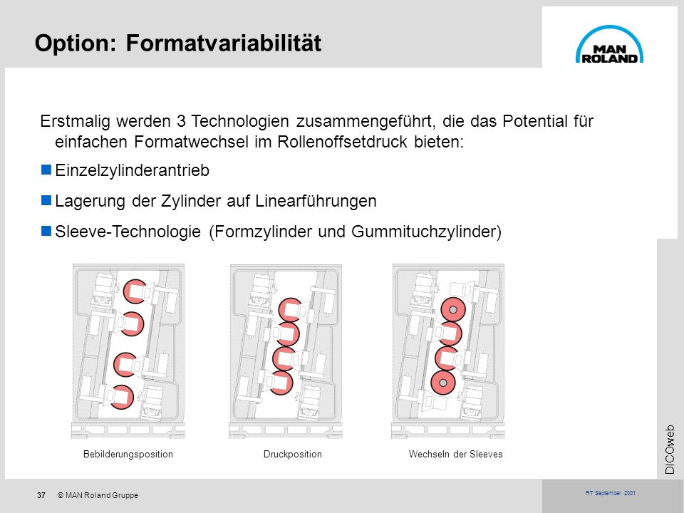 Option: Formatvariabilität
