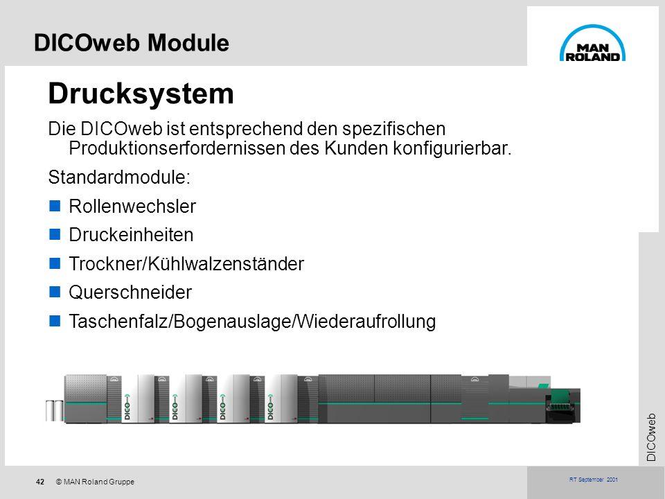 Drucksystem DICOweb Module