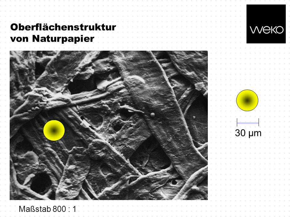 Oberflächenstruktur von Naturpapier