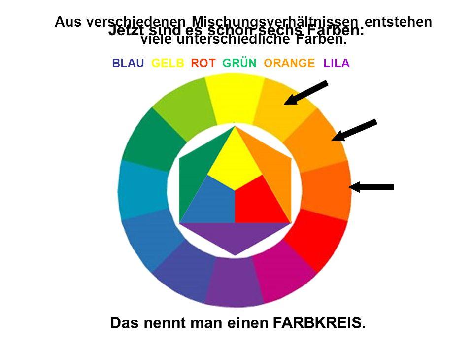Jetzt sind es schon sechs Farben: BLAU GELB ROT GRÜN ORANGE LILA