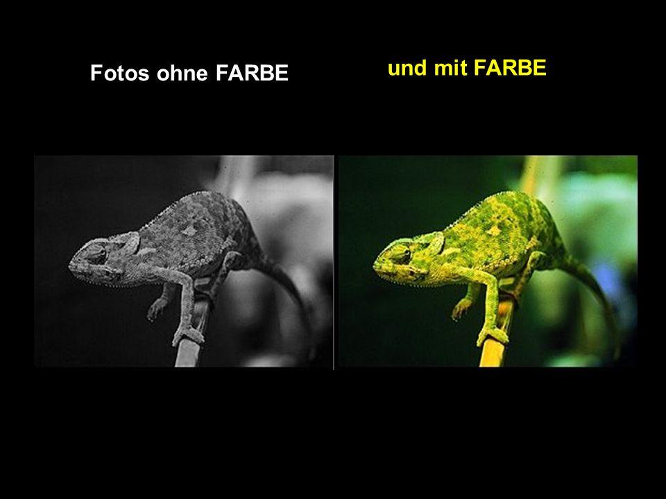 und mit FARBE Fotos ohne FARBE