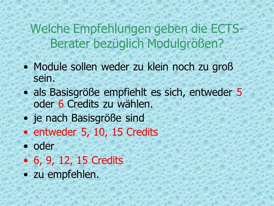 Welche Empfehlungen geben die ECTS-Berater bezüglich Modulgrößen