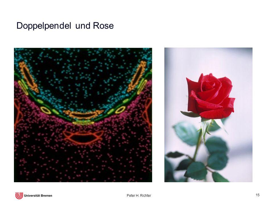 Doppelpendel und Rose Peter H. Richter