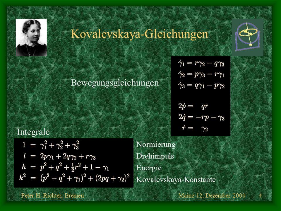 Kovalevskaya-Gleichungen