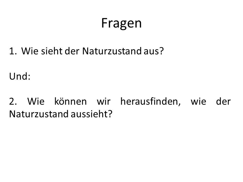 Fragen Wie sieht der Naturzustand aus Und: