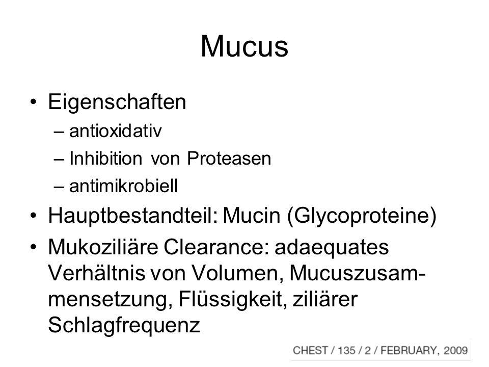 Mucus Eigenschaften Hauptbestandteil: Mucin (Glycoproteine)