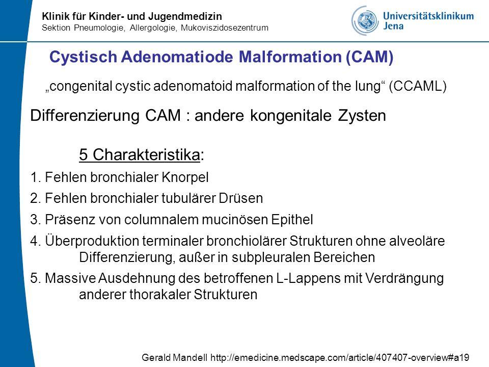 Cystisch Adenomatiode Malformation (CAM)