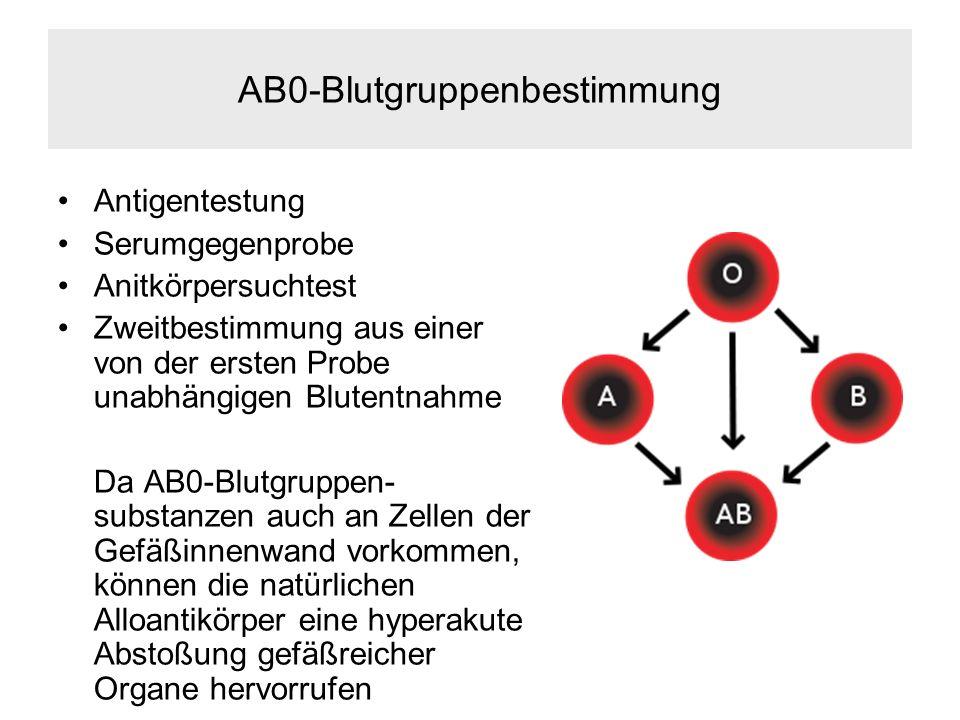 AB0-Blutgruppenbestimmung