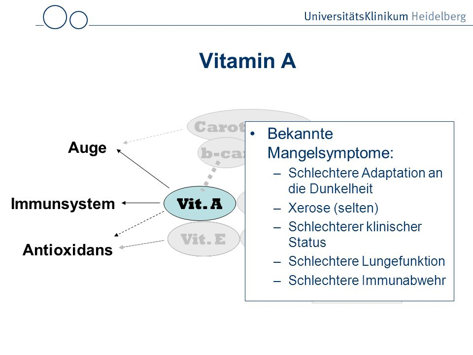 Vitamin A Carotinoide Bekannte Mangelsymptome: Auge b-car Knochen