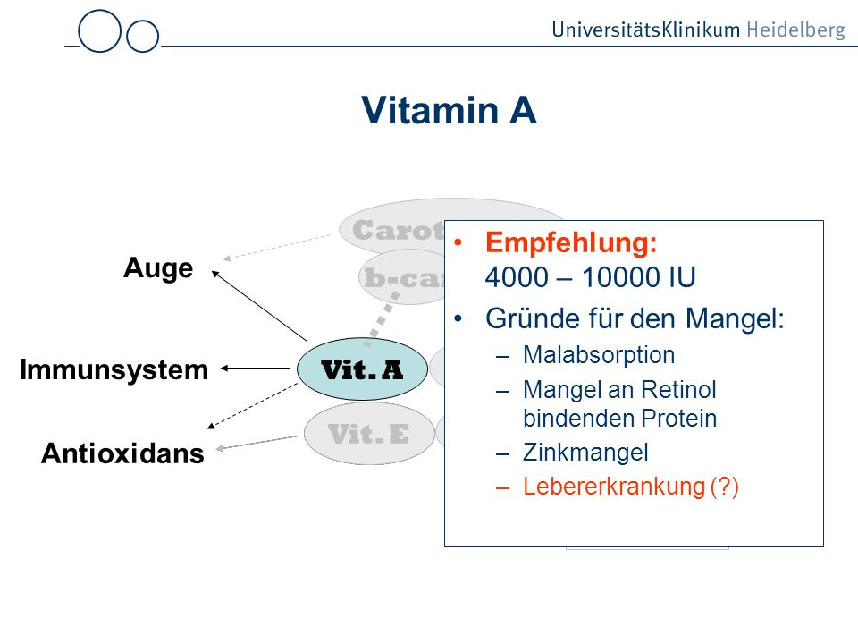 Vitamin A Carotinoide Empfehlung: 4000 – 10000 IU
